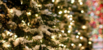 The Holiday Networking Guide: How to Make the Most of Holiday Parties