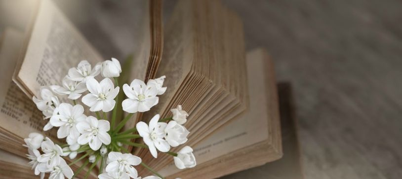 The Top 10 Books That Will Make the Biggest Impact in Your Life