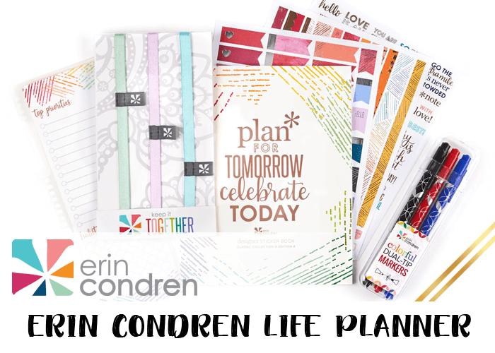 2019 Planner - Erin Condren