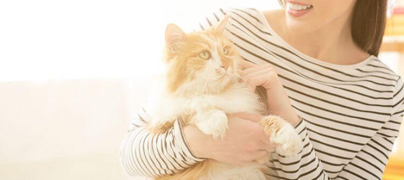 6 Ways Pets Can Improve Work-Life Balance